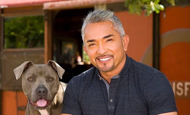 cesar-millan-networth-salary-house-cars-wiki